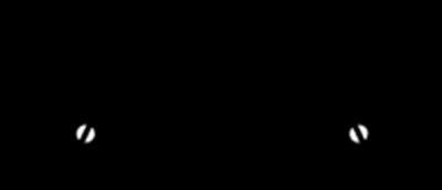 Garberia
